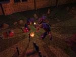 Neverwinter Nights: doch auf CD