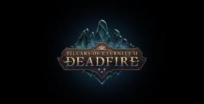 Pillars of Eternity 2: Arbeiten am Nachfolger offiziell bestätigt
